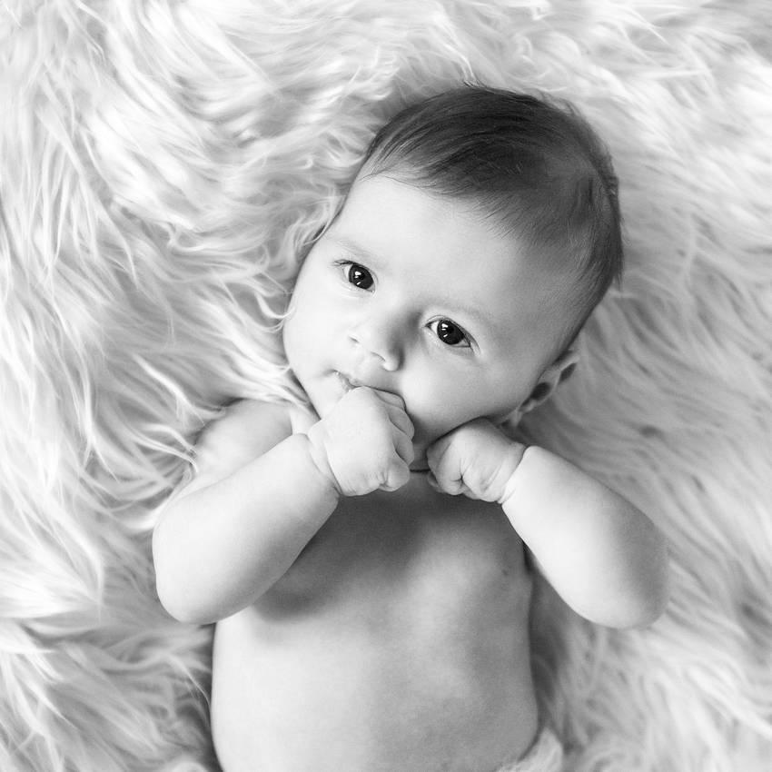 photographe bebe nancy sur fourrure